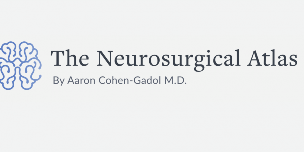 The Neurosurgical Atlas Grand Rounds, Oct 26 2020 – Approach selection for complex skull base lesion – S Froelich