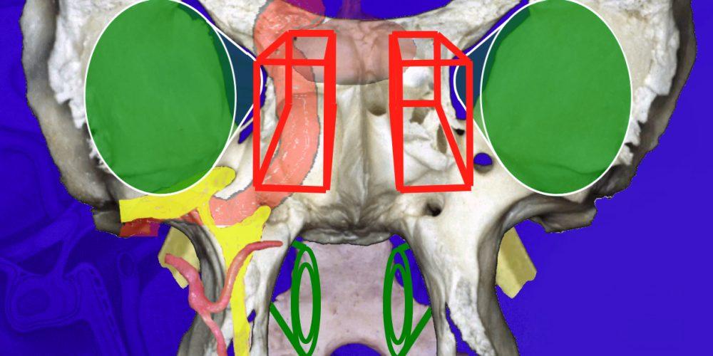 Nouvel Ouvrage : Le service de Neurochirurgie Lariboisiere participe aux recommendations internationales sur la chirurgie de la base du crâne endoscopique